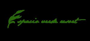 Espacio Verde Logo